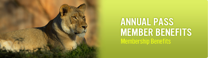 Discounts average $14 off with a Houston Zoo promo code or coupon. 10 Houston Zoo coupons now on RetailMeNot.