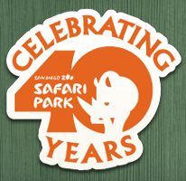 Safari Park: 40 Years of Conservation